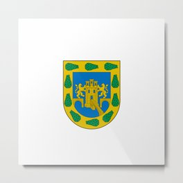 flag of mexico city Metal Print