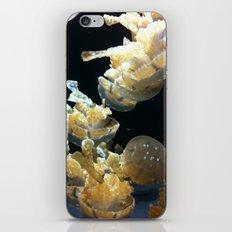 Mushrooms Of The Sea iPhone & iPod Skin