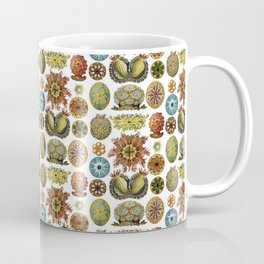 Ernst Haeckel Ascidiae Sea Squirts White Background Coffee Mug