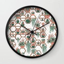 Succulent Garden in Morocco Wall Clock