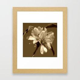Square Sepia Blooms Framed Art Print