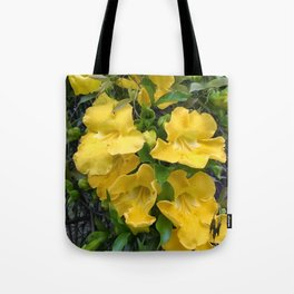 Cat's Claw Vines Tote Bag
