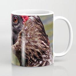 Male Muscovy Duck Coffee Mug