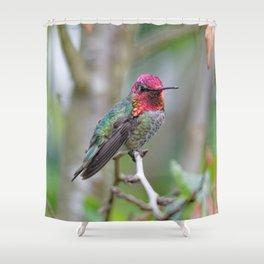 Anna's Hummingbird on the Plum Tree Shower Curtain