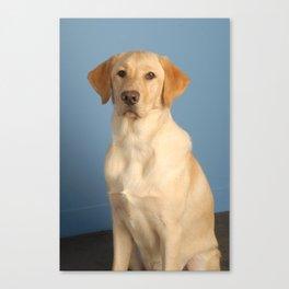 Nolan the Dog Canvas Print