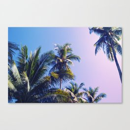 Pink Blue Tropical Island Sunset Landscape with Palm Trees Canvas Print