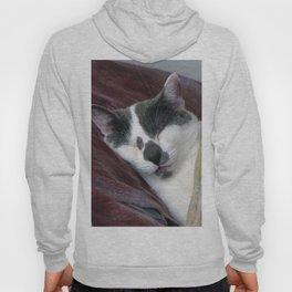 Cat Napping Hoody