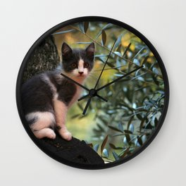 Gray Kitten on a Olive Tree Wall Clock
