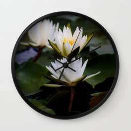 White Lily Flowers In A Pond With Green Lily Pads Wall Clock