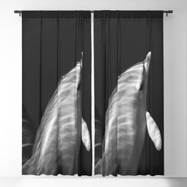 Black and white dolphins Blackout Curtain