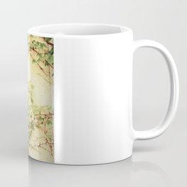 Window and ivy Coffee Mug