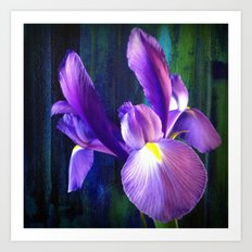 Iris - iPhoneography Art Print