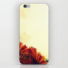 The Orange Glow iPhone & iPod Skin