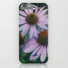 Beautiful summer with pink Echinacea / Daisy flowers iPhone Case