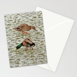 """""""Where's the pond?"""" - Frozen pond confuses the ducks Stationery Cards"""