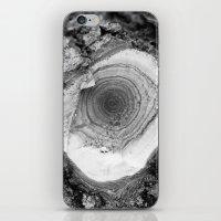 woody iPhone & iPod Skins featuring woody by DariyCraft