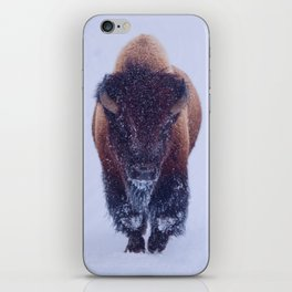 Bison In Snow iPhone Skin
