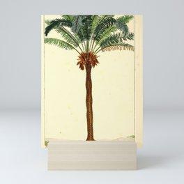 Tree Sago palm2 Mini Art Print