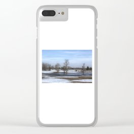 Frozen Still Clear iPhone Case