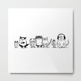 3 CRAZYSSS AND FRIENDS Metal Print
