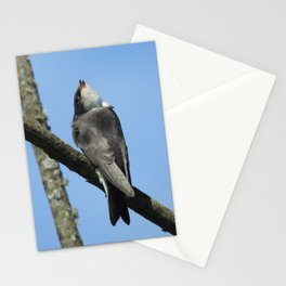 Juvenile Tree Swallow Stationery Cards