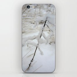 Winter Frost iPhone Skin