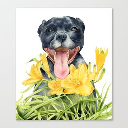 Joy | Pit Bull Dog and Daylily Watercolor Painting Canvas Print