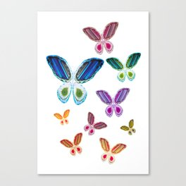 A Rainbow of Agate Butterflies Canvas Print