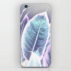 #191 iPhone & iPod Skin
