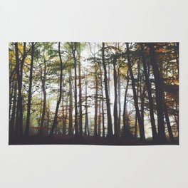 Autumn Forest Trees Rug