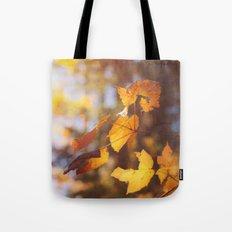 sun soaked autumn Tote Bag