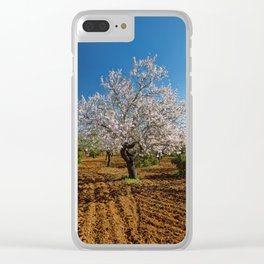 An Almond tree in flower Clear iPhone Case