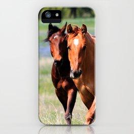 Horses & Bluebonnets II iPhone Case
