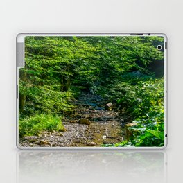 Small Creek in the Forest Laptop & iPad Skin