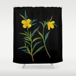 Mary Delany Botanical Vintage Flower Floral Collage Oenothera Fruticosa Shower Curtain