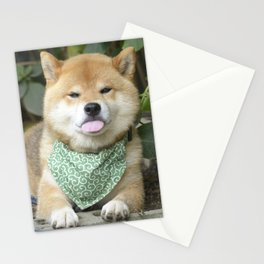 blep macho Stationery Cards