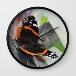 Red Admiral on a White Bird of Paradise Bloom Wall Clock