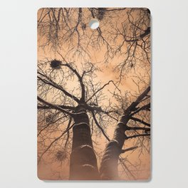 Winter Trees At Down Cutting Board