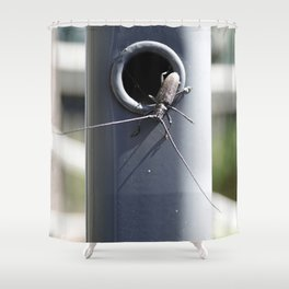 Longhorn beetle Shower Curtain