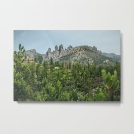 Black Hills National Forest Metal Print