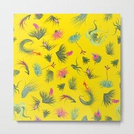 Air Plants bright yellow Background Metal Print