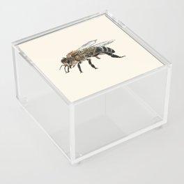Honey Bee Acrylic Box