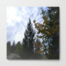 Cloudy day in the mountains... Metal Print