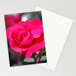 A Rose Says Love Stationery Cards