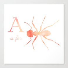 A is for Ant; Canvas Print