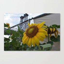 Flowers under the Bridge Canvas Print