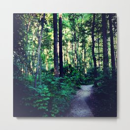 Path Through the Golden Forest  Metal Print