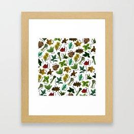 Tea Flavors // assorted teas for your enjoyment Framed Art Print