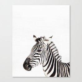 Zebra, Animal, ZOO, Nursery, Minimal, Modern, Wall art Art Print Canvas Print