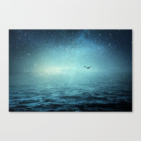 the sea and the universe Canvas Print